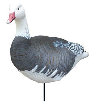 Image de Blue Goose sentry 4 pk
