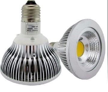 Image de Copy of Ampoule Del Par 30 Blanc 6500k