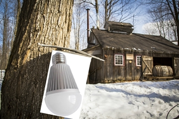 Image de Ampoules DEL 12 Volt