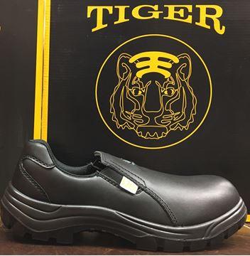 TIGER 2987