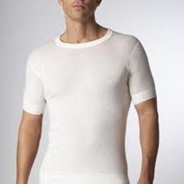 Image de maillot manche courte en laine Stanfield's
