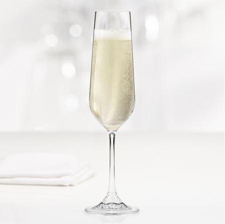 Image de Ens. de 4 flûtes à champagne SPLENDIDO 200 ml Trudeau |  TRUD 4900834
