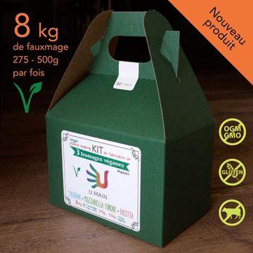 Kit de fabrication de 3 fromages véganes - Cheddar - Mozzarella fondue - Ricotta de U MAIN |
