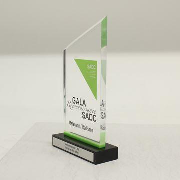 SADC - acrylique sur base
