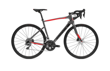 Argon - Vélo de route - KRYPTON GF - ULTEGRA - GRIS - SMALL