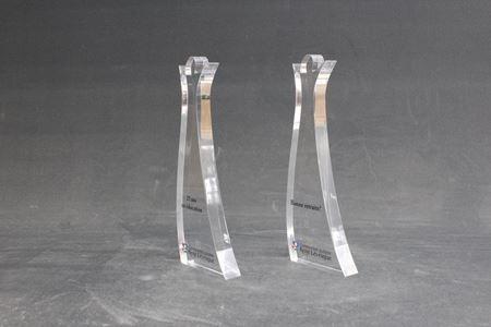 Image de Sur mesure - Trophée Acrylique -  CSRL